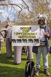 The Born Free Foundation held a demo in central London to protest trophy hunting. The group marched from Cavendish Square to Downing street where a letter was handed over.<br /> <br /> Richard Hancox | EEm 13042019