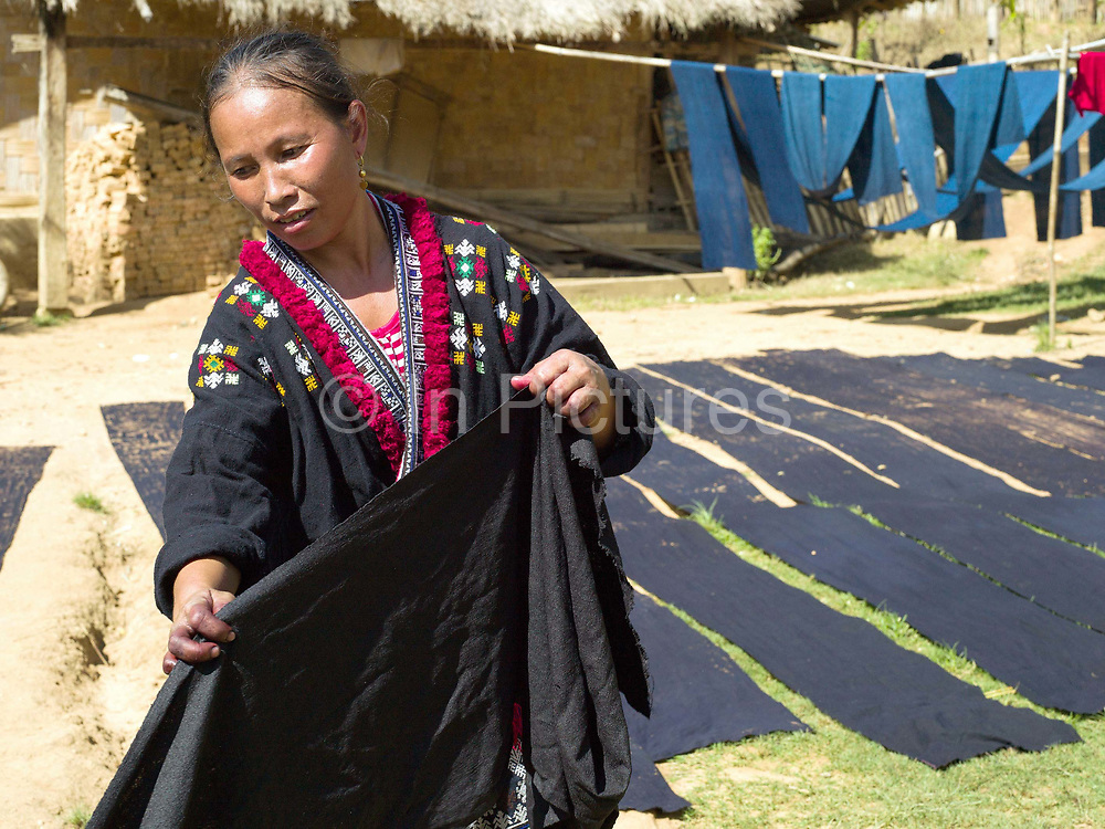 Meuay, a Iu Mien (Yao) ethnic minority woman removing a length of indigo dyed cotton fabric from a vat of Mak Bao (a trailing forest fruit) used to fix the colour, Ban Hom Phan, Houaphan province, Lao PDR. Meuay buys the cotton fabric from a nearby Tai Deng village and after dyeing the fabric many times to build up the colour she sells to local Iu Mien women to make their traditional clothing. One of the most ethnically diverse countries in Southeast Asia, Laos has 49 officially recognised ethnic groups although there are many more self-identified and sub groups. These groups are distinguished by their own customs, beliefs and rituals.