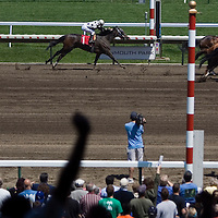 """(PPAGE1) Monmouth Park 5/13/2006 A fan raises his hands in celebration (left) as legendary jockey Joe Bravo (#3 horse to right) wins a photo finish race aboard 'SEVENTEEN ABOVE""""  during the 3 race of the day.  Michael J. Treola Staff Photographer.....MJT"""