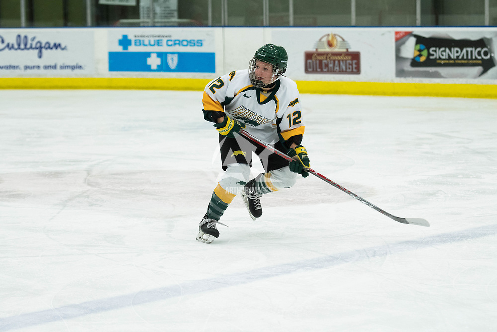 2nd year forward Chelsea Hallson (12) of the Regina Cougars in action during the Women's Hockey home game on October 13 at Co-operators arena. Credit: Arthur Ward/Arthur Images
