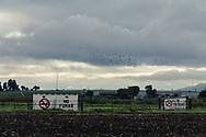 """Talleres de Pirotecnia cerca del área de talleres de """"La Saucera""""."""
