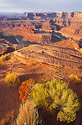 Morning light on the Colorado River and Island in the Sky from Dead Horse Point, Dead Horse Point State Park, Utah