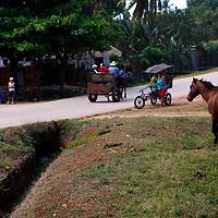 Central America, Cuba, Remedios. Horses, carts and bicycles of Remedios.