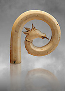 Medieval Bouquetin goats horn ivory crosier with traces of paint, circa 12th century from the south of Italy. Inv OA 11150, The Louvre Museum, Paris. .<br /> <br /> If you prefer you can also buy from our ALAMY PHOTO LIBRARY  Collection visit : https://www.alamy.com/portfolio/paul-williams-funkystock/romanesque-art-antiquities.html . Type-     Fasillar      - into the LOWER SEARCH WITHIN GALLERY box. Refine search by adding background colour, place, museum etc<br /> <br />  Visit our MEDIEVAL PHOTO COLLECTIONS for more   photos  to download or buy as prints https://funkystock.photoshelter.com/gallery-collection/Medieval-Romanesque-Art-Antiquities-Historic-Sites-Pictures-Images-of/C0000uYGQT94tY_Y