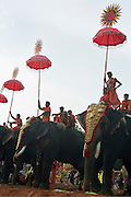 The great elephant festival in Karela, India, Kerala is a state on the tropical coast of south west India