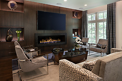 909_Turkey_American Automation Family room