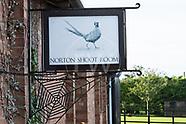 Norton Shoot