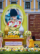 09 JUNE 2016 - BANGKOK, THAILAND:  A worker puts out flowers next to a large portrait of Bhumibol Adulyadej, the King of Thailand, in front of the Ministry of Defence in Bangkok. Thailand marked 70 years of the reign of Bhumibol Adulyadej, the King of Thailand, with a special alms giving ceremony for 770 monks in front of the Grand Palace in Bangkok. The King, also known as Rama IX, ascended the throne on 9 June 1946. He is the longest serving monarch in Thai history and the longest serving monarch in the world today. He is revered by most Thais and is widely seen as a unifying figure in the country.     PHOTO BY JACK KURTZ