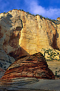 The high mesa in Zion National Park, Utah. Zion National Park is located in the Southwestern United States, near Springdale, Utah. A prominent feature of the 229-square-mile (590 km2) park is Zion Canyon, which is 15 miles (24 km) long and up to half a mile (800 m) deep, cut through the reddish and tan-colored Navajo Sandstone by the North Fork of the Virgin River. The lowest elevation is 3,666 ft (1,117 m) at Coalpits Wash and the highest elevation is 8,726 ft (2,660 m) at Horse Ranch Mountain. Located at the junction of the Colorado Plateau, Great Basin, and Mojave Desert regions, the park's unique geography and variety of life zones allow for unusual plant and animal diversity. Numerous plant species as well as 289 species of birds, 75 mammals (including 19 species of bat), and 32 reptiles inhabit the park's four life zones: desert, riparian, woodland, and coniferous forest. Zion National Park includes mountains, canyons, buttes, mesas, monoliths, rivers, slot canyons, and natural arches.