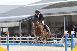 De Wit Thomas, BEL, Phoenix<br /> 6 years old Horses<br /> BK Young Horses Gesves 2021<br /> © Hippo Foto - Julien Counet