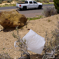 Discarded plastic bags and other refuse cling to the shrubs on the shoulder of Park Avenue in Gallup Saturday.