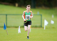 Mixed Distance Relay