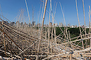 New York. elevated view . Doug and Mike Starn on the Roof: Big Bambú, bambou sculpture exhibitit on the roof of the metropolitan museum  New York - United States / big bambu exposition de Doug and Mike Starn sur le toit du metropolitan museum  New York  Etats unis  Doug and Mike Starn on the Roof: Big Bambú, bambou sculpture exhibitit on the roof of the metropolitan museum  New York - United States / big bambu exposition de Doug and Mike Starn sur le toit du metropolitan museum  New York  Etats unis