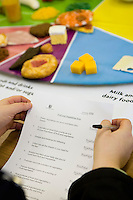 plasitc food used in a healthy eating class to teach overweight people about food groups.