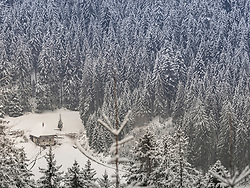 "Snowy forest with wooden farmhouse ""Fernh‰usle"" in the Black Forest, Baden-Wuerttemberg, Germany"