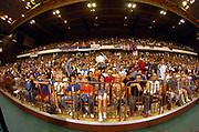 DESCRIZIONE : Novi Sad Eurobasket Men 2005 Serbia & Montenegro-Israele<br /> GIOCATORE : Panoramica Tifosi Fan Supporter Pubblico<br /> SQUADRA : Serbia & Montenegro Israele Israel<br /> EVENTO : Eurobasket Men 2005 Campionati Europei Uomini 2005<br /> GARA : Serbia & Montenegro Israele Israel<br /> DATA : 17/09/2005<br /> CATEGORIA :<br /> SPORT : Pallacanestro<br /> AUTORE : Ciamillo&Castoria/Fiba Europe Pool