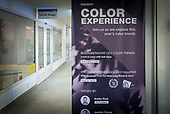 The Color Experience 2017