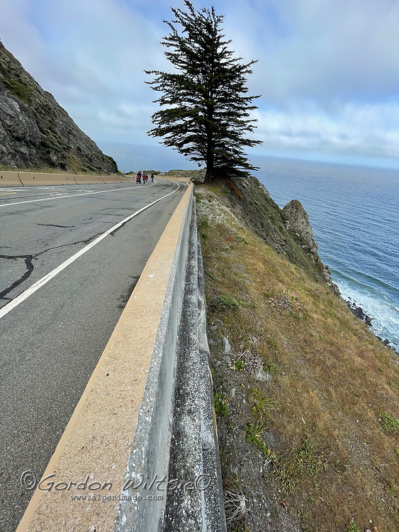 Hikers walk along an abandoned section of California Highway 1 winds through The Devils Slide south of San Francisco.
