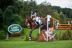 Daniels Cathal, IRL, Rioghan Rua<br /> World Equestrian Games - Tryon 2018<br /> © Hippo Foto - Sharon Vandeput<br /> 16/09/2018