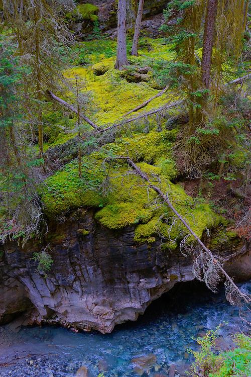 Canadian Rockies, Banff National Park, Johnston Canyon