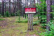 Kaszubski las w okolicach miejscowości Wdzydze Kiszewskie,