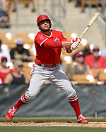 GLENDALE, ARIZONA - MARCH 04:  David Fletcher of the Los Angeles Angels bats against the Chicago White Sox on March 4, 2019 at Camelback Ranch in Glendale Arizona.  (Photo by Ron Vesely)  Subject:  David Fletcher