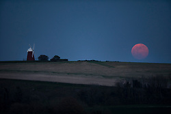 © Licensed to London News Pictures. 19/04/2019. Chichester, UK. A full Pink Moon rises over near Chichester, West Sussex. April's full moon is named after pink flowers called phlox – that bloom in spring. Photo credit: Peter Macdiarmid/LNP