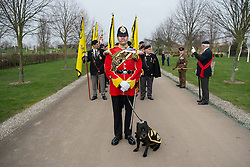 © Licensed to London News Pictures. 27/02/2016. <br /> <br /> Pictured: Warrant Officer Class 2 Greg Hedges, Mascot Handler, leads the march with the Regimental Mascot, of The Staffordshire Regiment, Sergeant Watchman The Fifth at the Operation Granby Service at The National Memorial Arboretum on Saturday 27th February 2016.<br /> <br /> A service has been held at The National Memorial Arboretum on Saturday 27th February 2016 to commemorate The Stafford Regiments participation in Operation Granby, a British military operation held in 1991 during the first Gulf War in which soldiers helped liberate Kuwait from Iraqi occupation ordered by Saddam Hussain.    <br /> <br /> Two Staffordshire Regiment soldiers, Private Carl Moult and Private Shaun Taylor were killed in Operation Granby.<br /> <br />  Photo credit should read Max Bryan/LNP