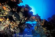 diver swims through underwater arch off <br /> West Caicos, Turks & Caicos Islands,<br /> ( Western Atlantic Ocean )  MR 156