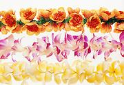 Hawaiian leis against white
