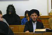 A man dressed up as a gorilla in the congregation during the Megillah reading for Purim in Walford road synagogue. Purim is one of the most entertaining Jewish holidays.  It commemorates the time when the Jewish people living in Persia were saved from extermination from a massacre by Haman. Due to the courage of a young Jewish woman called Esther, it is customary for men dress u and to hold carnival-like celebrations.