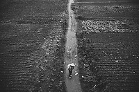 A farmer walks along a narrow path cutting through farmlands in Hanoi, Vietnam, beneath Long Bien Bridge.