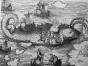 St Brendan and the whale from a 16th century engraving. Saint Brendan of Clonfert or Bréanainn of Clonfert (c. 484 – c. 577) Situated somewhere west of Europe, St. Brendan's Isle is a phantom island often regarded as myth, since, unless it is the so-called 'Eighth Canary Island' known since time immemorial to the Spanish and Portuguese authorities as San Borondón, only a few have claimed to have seen it. In the Irish tradition, the island is named after the Saint Brendan who founded the Clonfert monastery and monastic school. It was apparently discovered by the saint and his followers while they were traveling across the ocean, evangelizing to islands. It appeared on numerous maps in Christopher Columbus' time, apparently acting as one of the things spurring him on to explore the ocean westwards. It also sparked some controversy, because the claim is that St. Brendan and his brethren arrived at the Americas first, around the 6th century (530 AD). The first mention of the island was in the ninth century Latin text Navigatio Santi Brendani Abatis (Voyage of Saint Brendan the Abbot), placing the island into Irish and European folklore.