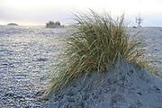De Zandmotor voor de kust van Ter Heijde en Kijkduin. Het is een een grote kunstmatige zandbank in de vorm van een schiereiland  om het zand langs de Delflandse kust tussen Hoek van Holland en Scheveningen te verspreiden ter versteviging van de kust. |  The Sand Motor off the coast of Ter Heijde and Kijkduin. It is a large artificial sandbank in the shape of a peninsula to spread the sand along the Delfland coast between Hoek van Holland and Scheveningen to strengthen the coast.