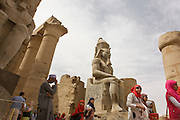 Tourist groups stand and photograph beneath the giant colossus in the Court of Ramesses II, at the ancient Egyptian Luxor Temple, Nile Valley, Egypt. The temple was built by Amenhotep III, completed by Tutankhamun then added to by Rameses II. Towards the rear is a granite shrine dedicated to Alexander the Great and in another part, was a Roman encampment. The temple has been in almost continuous use as a place of worship right up to the present day.