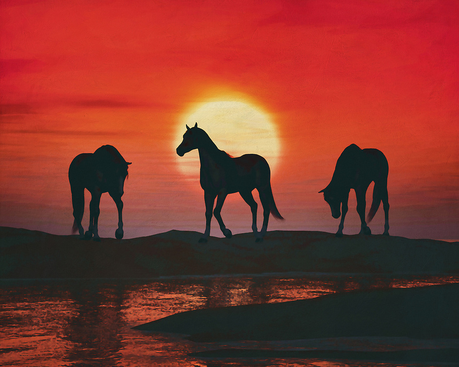 Three horses arrive at a lake to drink. The horses do this in the light of a beautiful red sunset This coastal scene can be printed in different sizes and on different materials. Both on canvas, wood, metal or framed so it certainly fits into your interior. –<br /> -<br /> BUY THIS PRINT AT<br /> <br /> FINE ART AMERICA / PIXELS<br /> ENGLISH<br /> https://janke.pixels.com/featured/horses-at-red-sunset-jan-keteleer.html<br /> <br /> <br /> WADM / OH MY PRINTS<br /> DUTCH / FRENCH / GERMAN<br /> https://www.werkaandemuur.nl/nl/shopwerk/Paarden-bij-rode-zonsondergang/797500/132?mediumId=1&size=70x55<br /> –<br /> -