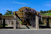 2014 March 20:  Spring in the Napa Valley wine region.  Stock Photos