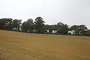 View looking back across the fields towards Warren House, Wayne McGregor's Dartington Estate home in Devon<br /> Vanessa Berberian for The Wall Street Journal