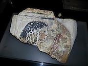 Egyptian artifact at the Hecht Museum, University of Haifa, Israel