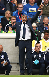 Brighton & Hove Albion manager Chris Hughton during the game