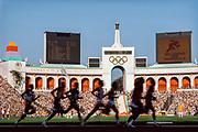 1984 Olympics - Mens' 800m Semifinal #2; Seb Coe visible at center, August 5, 1984.