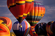 Hot air balloons rising in dawn light at the International Balloon Fiesta, Albuquerque, New Mexico USA
