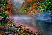 Autumn foliage and fog on a trout stream in Livingston Manor, New York.