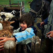 Autistic child Rowan, 5, plays with animals in Mongolia, accompanied by his parents Rupert and Kristin, their Mongolian guide Tulga, his six-year-old son Bodibilguunson and an American documentary TV crew. .Rowan's parents believe horses and shamans can unlock their sonís autistic mind. This is their journey of discovery across Mongolia on horseback. .The story is published by the Sunday Times and accompany text by Tim Rayment.