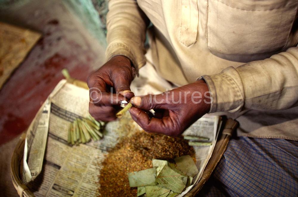A man making beedi cigarettes, Varanasi, India