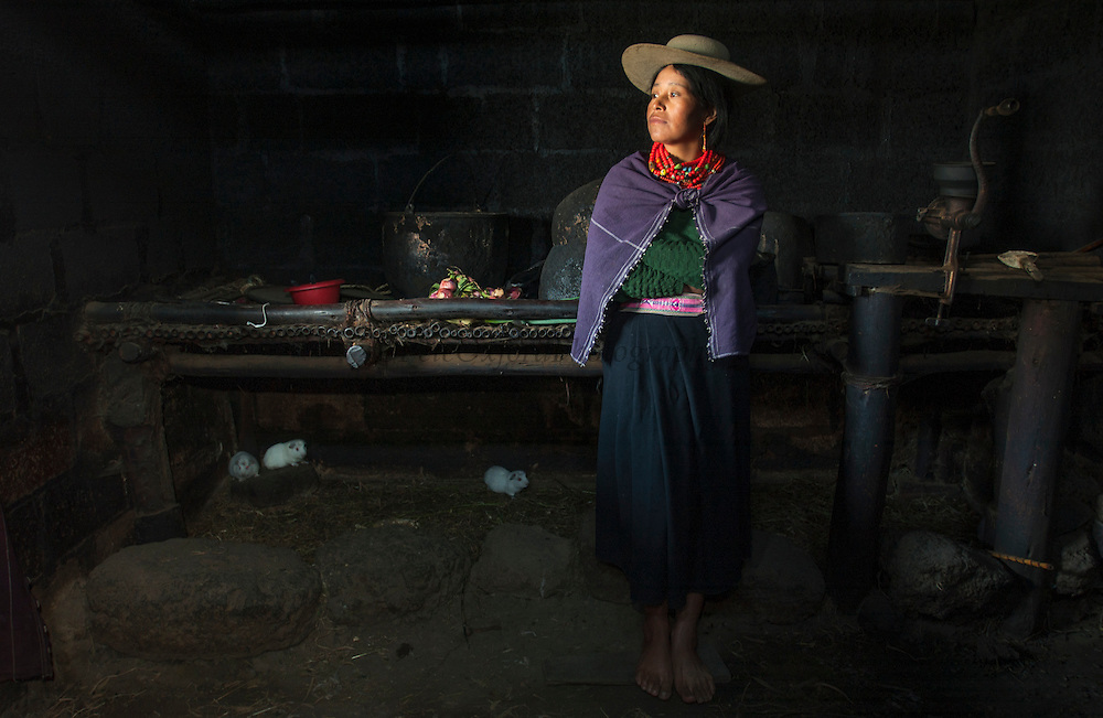 Olimpia Pilla with Cui (Guinea pigs) being raised for food and living on the kitchen floor.<br /> Salasaca Indian<br /> Salasaca Village, near Ambato<br /> Andes<br /> ECUADOR.  South America<br /> Salasacha is well known for their original weaving designs