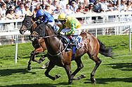 MUSTAJEER (17) ridden by Colin Keane and trained by Ger Lyons (IRE) winning The Sky Bet Ebor Handicap over 1m 6f (£1,000,000)   during the Ebor Festival at York Racecourse, York, United Kingdom on 24 August 2019.