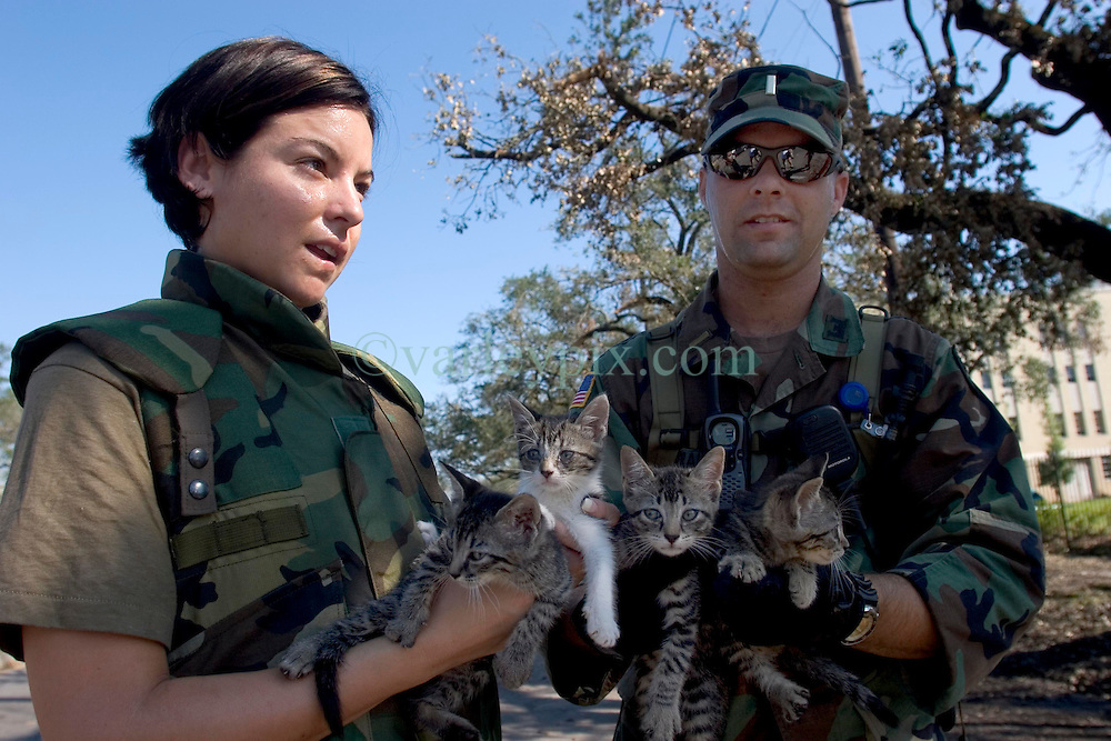 08 Sept 2005. New Orleans, Louisiana.  Hurricane Katrina aftermath. <br /> L/R; Sgt April Albers and Lt Gerald of the 769th Engineer Battalion rescue 4 kittens from devastated Uptown New Orleans.<br /> Photo; ©Charlie Varley/varleypix.com