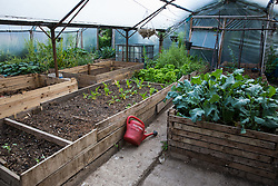 Sipson, UK. 5th June, 2018. Plants grow in a poly tunnel at Grow Heathrow. Grow Heathrow is a squatted off-grid eco-community garden founded in 2010 on a previously derelict site close to Heathrow airport to rally support against government plans for a third runway and it has since made a significant educational and spiritual contribution to life in the Heathrow villages, which remain threatened by Heathrow airport expansion.