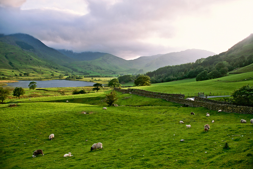 The lush green landscape of Northern England.